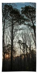 First Day Of Spring, North Carolina Pines Beach Towel by Jim Moore