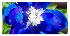 First Delphinium Agape Gardens Beach Towel