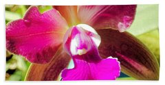 Beautiful Lavendar Orchid Beach Sheet by Belinda Lee