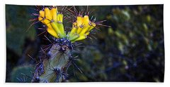 First Signs Of Spring On The Sonoran Desert Beach Towel