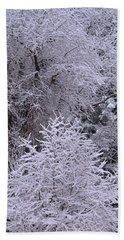 First Snow I Beach Towel