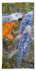 Fish Fighting For Food Beach Sheet