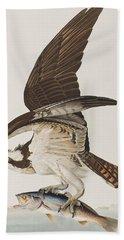 Fish Hawk Or Osprey Beach Towel