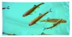 Fish School In Turquoise Lake - Plitvice Lakes National Park, Croatia Beach Sheet