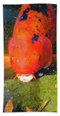 Beach Towel featuring the photograph Fish Surprise by Raphael Lopez