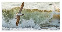 Fishing The Surf Beach Sheet