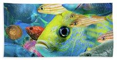 Fishy Collage 02 Beach Sheet
