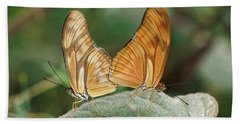 Beach Towel featuring the photograph Flambeau Butterfly - 2 by Paul Gulliver