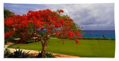 Flamboyant Tree In Grand Cayman Beach Sheet by Marie Hicks