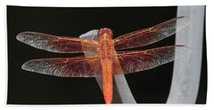 Flame Skimmer Beach Sheet