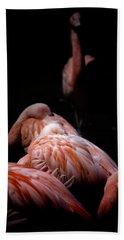 Flamenco Beach Sheet