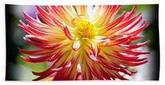 Beach Towel featuring the photograph Flaming Beauty by AJ Schibig