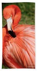 Flamingo At The Park 1 Beach Sheet