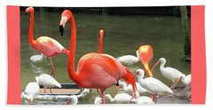 Beach Towel featuring the photograph Flamingo Party by Beth Saffer