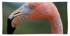 Flamingo Protrait Beach Sheet by Marty Fancy