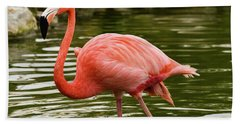 Flamingo Wades Beach Towel