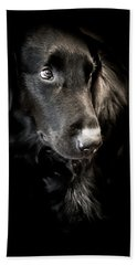 Flat Coated Retriever Beach Towel