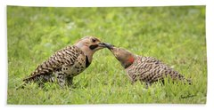 Flicker Feeding Beach Towel