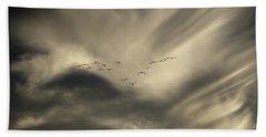Beach Sheet featuring the photograph Flight 016 Westbound by Robert Geary