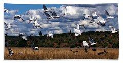Beach Towel featuring the photograph Flight by Karen Zuk Rosenblatt