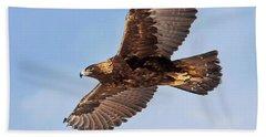 Flight Of The Golden Eagle Beach Towel