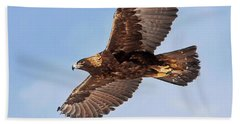 Flight Of The Golden Eagle Beach Towel