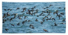 Beach Towel featuring the photograph Flock Of Birds by Trace Kittrell