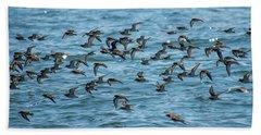Flock Of Birds Beach Sheet by Trace Kittrell