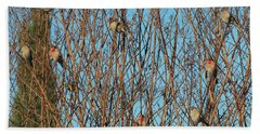 Flock Of Finches Beach Towel