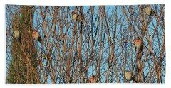 Flock Of Finches Beach Sheet