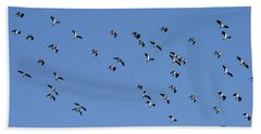 Flock Of Migratory Lapwing Birds In Clear Winter Sky Beach Towel