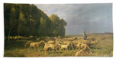 Flock Of Sheep In A Landscape Beach Towel by Charles Emile Jacque