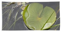 Beach Towel featuring the photograph Flooded Pad by Betty-Anne McDonald