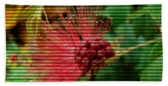 Beach Towel featuring the photograph Floral Fan by Sue Melvin