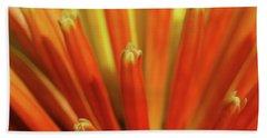 Floral Fireworks Beach Sheet