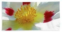 Floral Impressions Beach Sheet