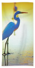 Florida Atlantic Beach Ocean Birds  Beach Towel
