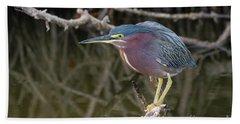 Florida Green Heron Beach Sheet