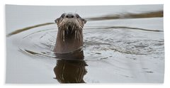 Florida Otter Beach Towel