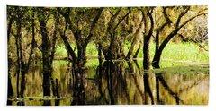 Beach Towel featuring the photograph Florida Swamp by Rosalie Scanlon