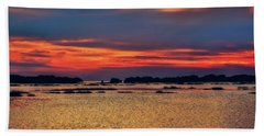 Beach Towel featuring the photograph Florida West Coast  by Louis Ferreira