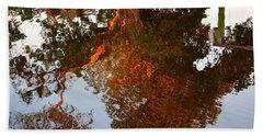 Florida Winter Reflection Beach Towel