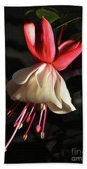Flower 0021-a Beach Sheet