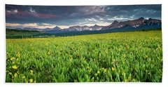 Flower Field And Sneffels Range Beach Towel