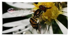Beach Towel featuring the photograph Flower Fly On Wildflower by William Selander
