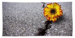 Flower In Asphalt Beach Sheet