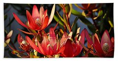 Beach Towel featuring the photograph Flowers At Sunset by AJ Schibig