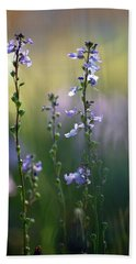Flowers By The Pond Beach Towel