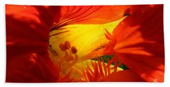 Flowerscape Nasturtium Two Beach Towel
