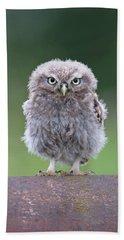 Fluffy Little Owl Owlet Beach Towel